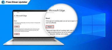 How to Fix Microsoft Edge Not Working on Windows 10 {Solved}
